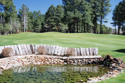 Pinetop Lakes Cc