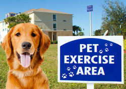Pet-Friendly Rooms Available