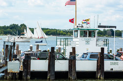 Take the Oxford Ferry or Drive Around to St. Michaels