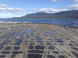 The Tessellated Pavement