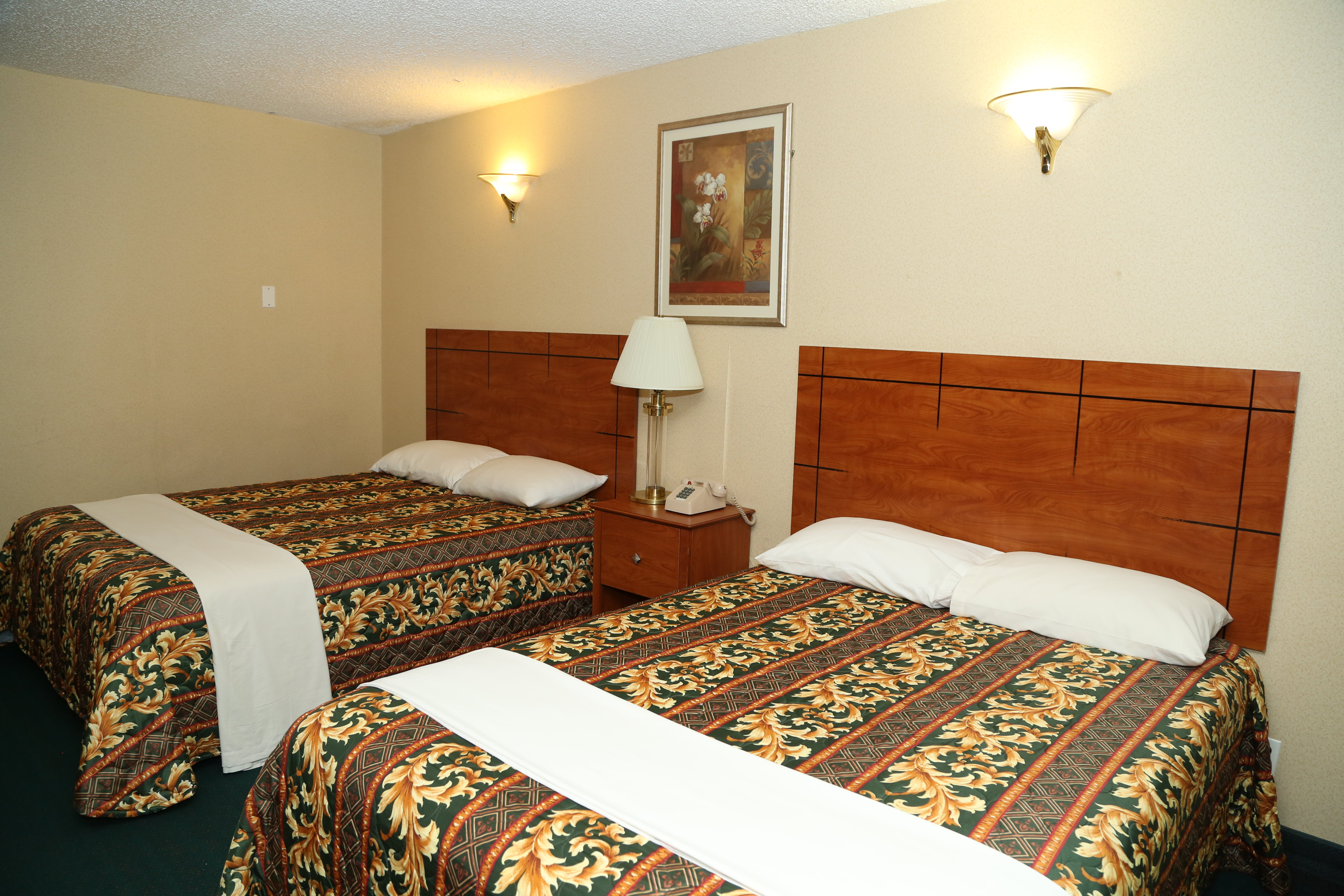Hotel Near JFK Airport, Queens New York- Best price guaranteed on ...