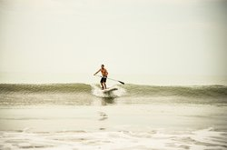 Catch a wave on your SUP board