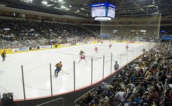 Attraction Erie Otters--Hockey