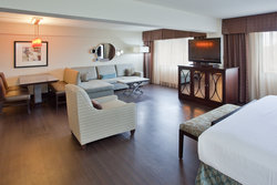 King Suite with free wi-fi