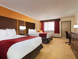 Executive Two Double Bed Room