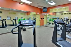 Los Angeles style fitness room
