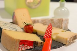 Various types of Swiss cheese