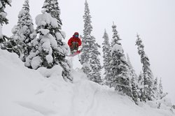Schweitzer_Powder Jumps
