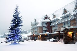 Schweitzer_Holiday Snow