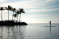 The Kahala Beach Stand Up Paddleboard