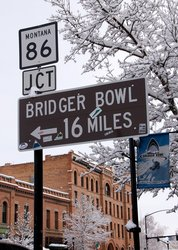 Bridger Sign