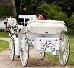 Just Married Carriage Stock