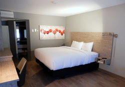 Executive room - king size bed