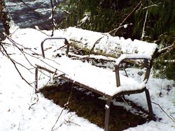 An Icey Seat at the River