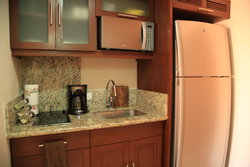 Studio Penthouse Kitchenette