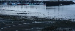 Digby harbour at low tide