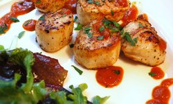 Seared Scallops Roasted Pepper Sauce