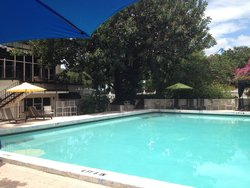 Winter Haven Hotel Oversized Outdoor Pool