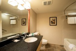 Hilton Room Bathroom