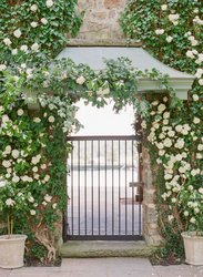 Ivy Wall Gate