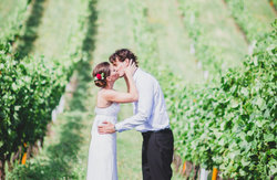 Celebration of your love in the vineyards