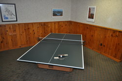 Games Room Ping Pong Table