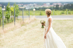 Bride in the vineyards