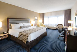 King bedded room with premium wifi and 72 HD channels
