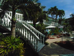 Cheston House Courtyard and Palm Trees