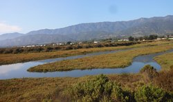 Carpinteria Salt Marsh - Photo by CaliHike