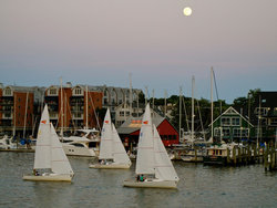 Sailboat Race Under Moonlight