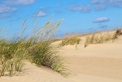 Jockey S Ridge Kitty Hawk