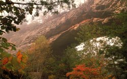 Daniel Boone National Forest, Photo By Us Forest Service