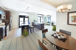 Penthouse Kitchen And Living Area