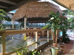 Gazebo Poolside Bar