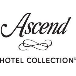 Ascend Collection Large