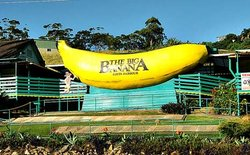 The Big Banana - credit to coffscoastadvocate.com.au