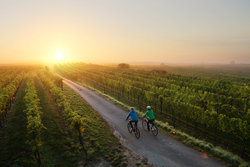 Romantic cycling in the sunset in the Thermenregion