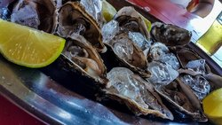 The Red Bank Guinness Oyster Festival