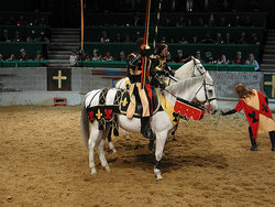 Knight on Horse - Hotel Deal with Medieval Times