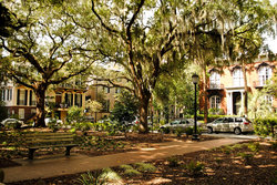 Explore Savannah