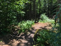 Take a quick trip on our nature trail