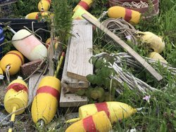Buoys in Corea