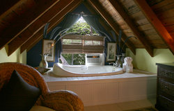 Treetop Suite Tub