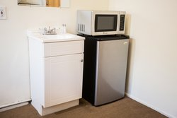 Sink, Microwave, & Mini-Fridge