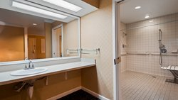 Accessible Washroom with Roll-In Shower