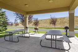 Picnic and Grill Area
