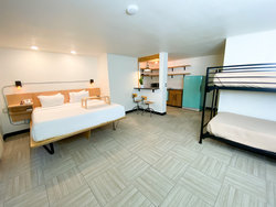 Studio Kitchenette with 1 King Bed + Bunkbed (Dogs OK)