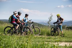 Mountain bikers in the Vienna Woods can expect a lot