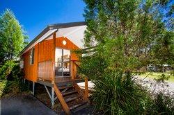 Banksia Open Plan Studio